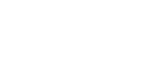 The Platinum Experince sponsor logo